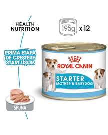 Royal Canin Starter Mouse gestatie/ lactatie pui hrana umeda caine, 195 g