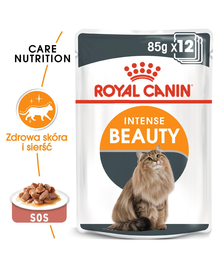 ROYAL CANIN Intense BEAUTY în sos 85 g x 12