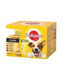 PEDIGREE Hrană umedă pentru câini cu vită pui și curcan în sos 48 x 100 g