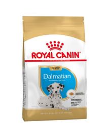 ROYAL CANIN Dalmatian Puppy 12 kg