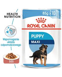 Royal Canin Maxi Puppy Hrană Umedă Câine 10x140 g