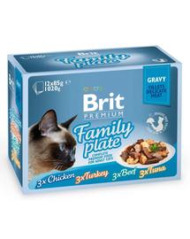 BRIT Premium Cat Family Plate file în sos - diverse arome 1,2 kg (12x85 g)