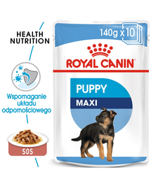 Royal Canin Maxi Puppy hrana umeda caine junior, 10 x 140 g