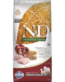 FARMINA N&D Ancestral Grain Adult Medium/Maxi pui și rodie 12 kg