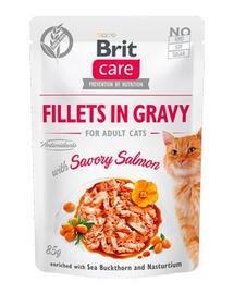 BRIT Care Cat Fillets in gravy, file de somon în sos 85 g