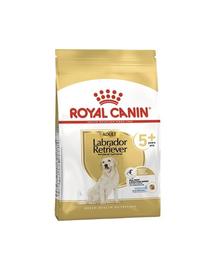 Royal Canin Labrador Adult 5+ hrana uscata caine senior, 12 kg