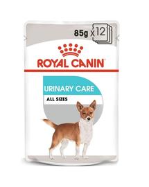 ROYAL CANIN Urinary Care Hrană umedă pentru câini adulți, protecția tractului urinar inferior 85 g x 12