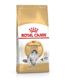 ROYAL CANIN Norwegian Forest Cat 20 kg (2 x 10 kg) hrană uscată pentru pisici adulte Norvegiana de pădure