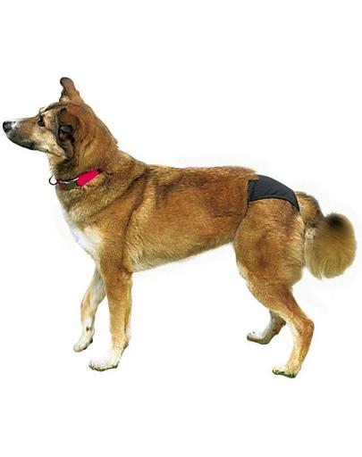TRIXIE Chiloți pentru câini mărimea XL 60–70 cm negru