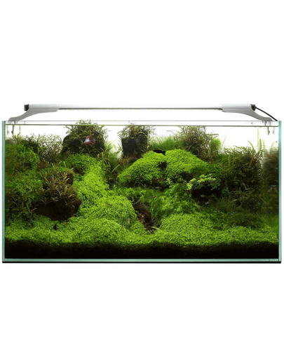 AQUAEL Leddy Slim 36W Plant 100-120 cm