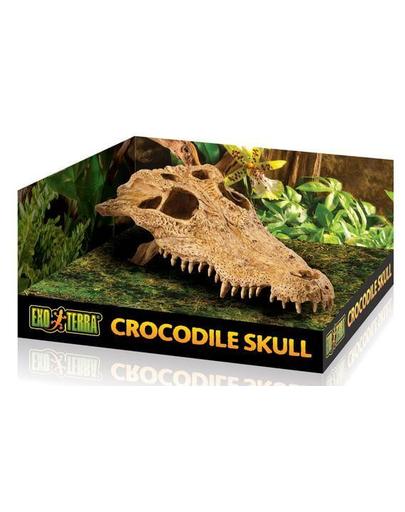 EXO TERRA Ascunzătoare craniu crocodil