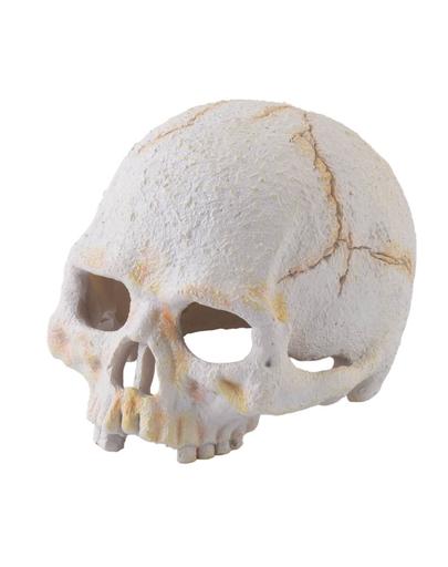 EXO TERRA Ascunzătoare craniu uman mic