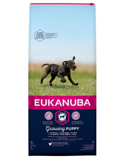 EUKANUBA Growing Puppy Large Breed - bogat în pui proaspăt 12kg