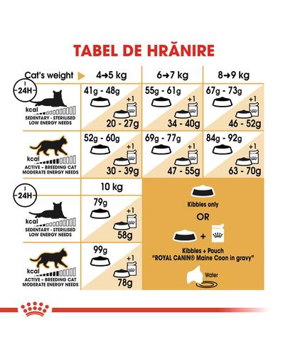 Royal Canin Maine Coon Hrană Uscată Pisică 10 kg
