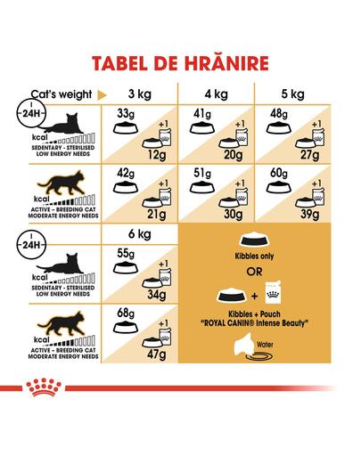 Royal Canin Siamese Hrană Uscată Pisică 400 g