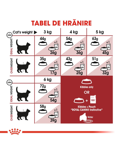 Royal Canin Fit32 Hrană Uscată Pisică 2 kg
