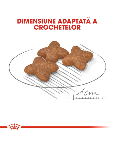 Royal Canin Mini Adult hrana uscata caine, 4 kg