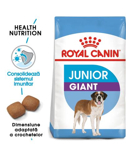 Royal Canin Giant Junior Hrană Uscată Câine 15 kg + 3 kg imagine