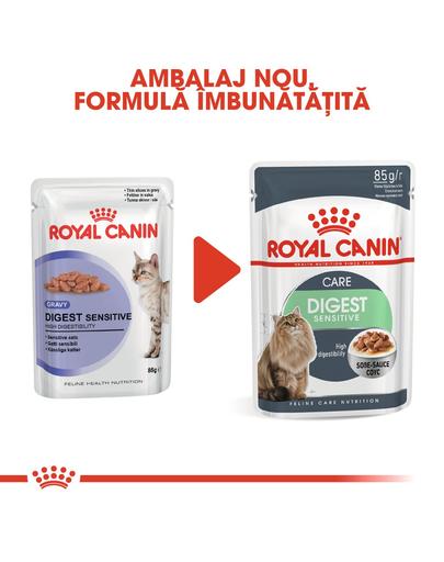 Royal Canin Digestive Care Hrană Umedă Pisică 85 g