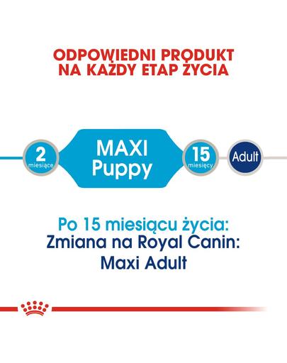Royal Canin Maxi Puppy Hrană Umedă Câine 140 g