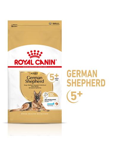 Royal Canin German Shepherd Adult 7+ hrana uscata caine senior Ciobanesc German, 12 kg imagine