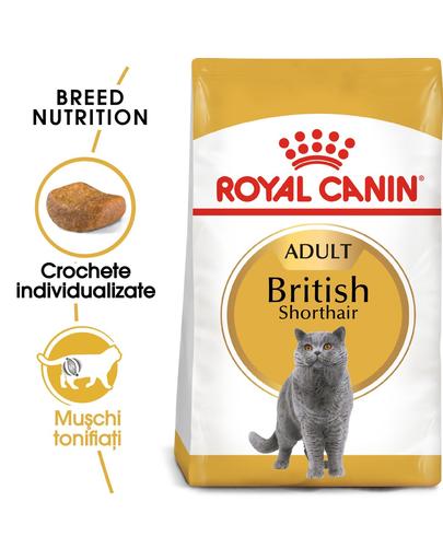 ROYAL CANIN British Shorthair Adult 20 kg (2 x 10 kg) hrană uscată pentru pisici adulte British Shorthair imagine