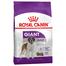 Royal Canin Giant Adult Hrană Uscată Câine 15 kg