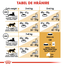 Royal Canin British Shorthair Adult hrana uscata pisica, 10 kg