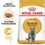 Royal Canin British Shorthair Adult Hrană Uscată Pisică 34 2 kg