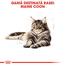 Royal Canin Maine Coon Adult hrana uscata pisica, 4 kg