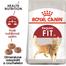 Royal Canin Fit32 Adult hrana uscata pisica cu activitate fizica moderata, 10 kg