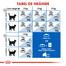 Royal Canin Indoor Hrană Uscată Pisică 2 kg