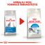 Royal Canin Indoor Hrană Uscată Pisică 400 g
