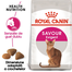 Royal Canin Exigent Savour Hrană Uscată Pisică 10 kg