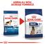 Royal Canin Maxi 5+ Adult hrana uscata caine intre 5 si 8 ani, 15 kg