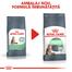 Royal Canin Digestive Care Hrană Uscată Pisică 10 kg