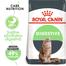 Royal Canin Digestive Care Adult hrana uscata pisica pentru confort digestiv, 400 g