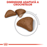 Royal Canin Hairball Care Hrană Uscată Pisică 4 kg