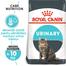 Royal Canin Urinary Care Hrană Uscată Pisică 2 kg