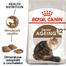 Royal Canin Ageing 12+ Hrană Uscată Pisică 4 kg