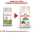 Royal Canin Outdoor Hrană Uscată Pisică 10 kg