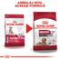 Royal Canin Medium Ageing 10+ Hrană Uscată Câine 15 kg